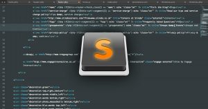 sublime-text-la-gi-dizibrand.com