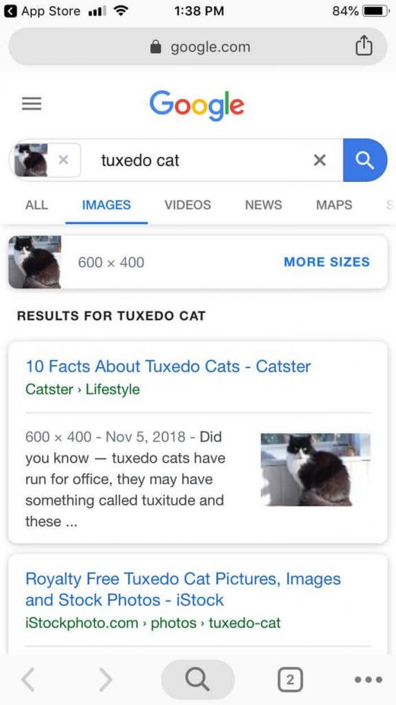 tìm kiếm ngược hình ảnh trên google hình ảnh