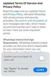 WhatsApp-la-gi-2-dizibrand