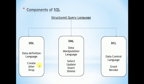 Phân loại câu lệnh SQL